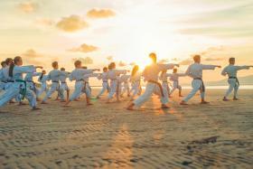 Art Martial